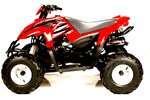 Kid's 50cc Desert Cat ATV